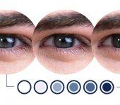 image-1.1333333333333